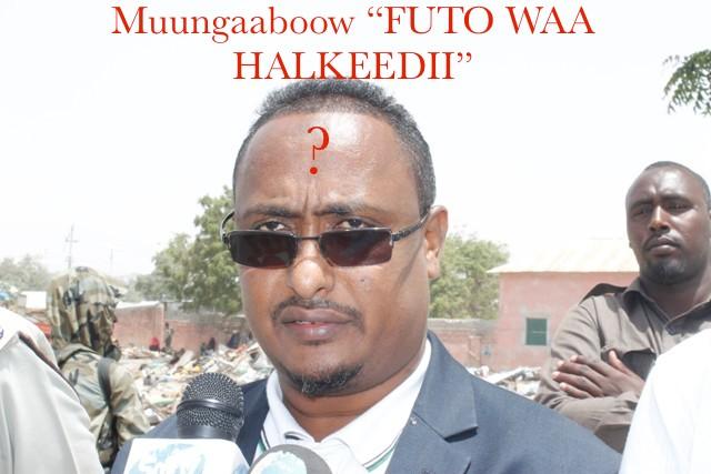 Gudoomiye Muungaab oo ku xigeenkii Yaaqshiid ee Amniga iyo Siyaasadda ku bedelay gabadh walaashiis dhashay?